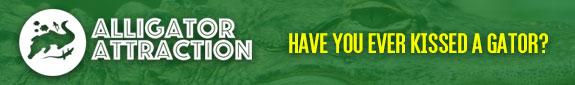 aa-web-banner