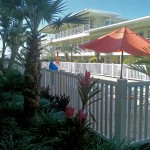 11730 Gulf - pool pic