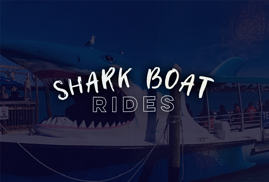 Shark Boat Rides